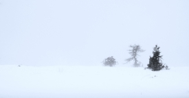Scapes 13: Semmering Whiteout