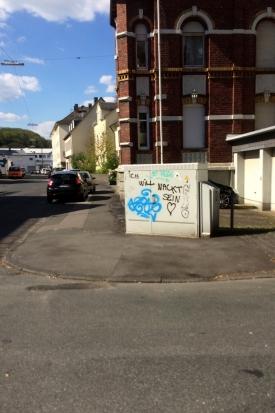 Naked Vandalism