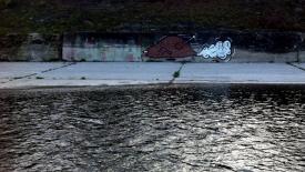 Broiler Vandalism
