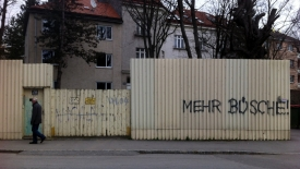 Shrub Vandalism